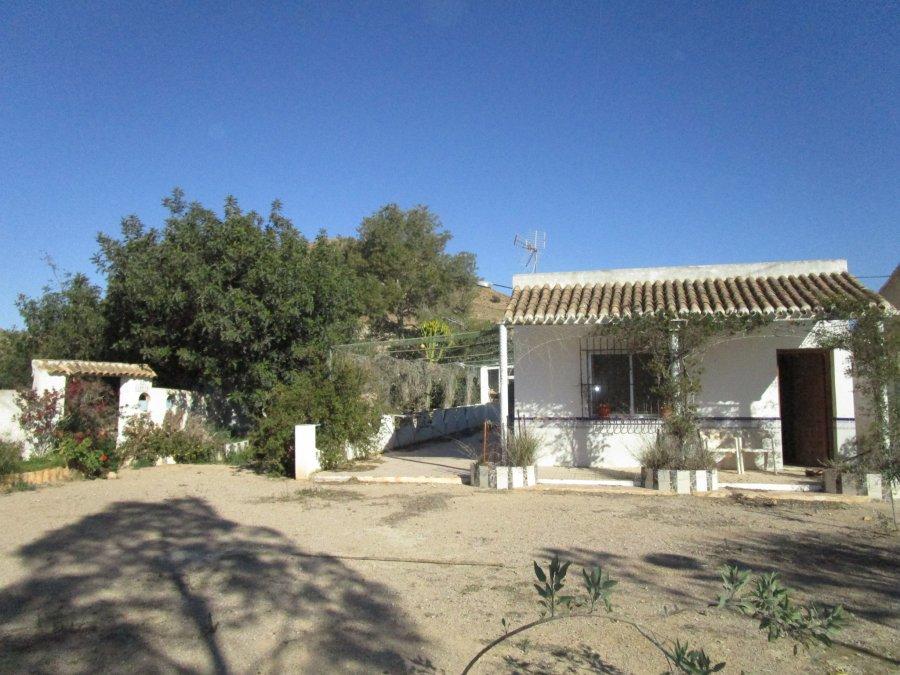 Finca rustica-Estrecho Fuente Alamo-Rio Seco-casa-ahora gestores inmobiliarios-AHV-187 (9)